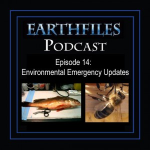Episode 14: Environmental Emergency Updates