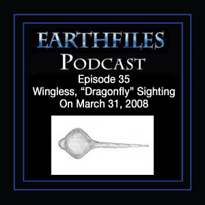 "Episode 35 - Wingless, ""Dragonfly"" Sighting On March 31, 2008"