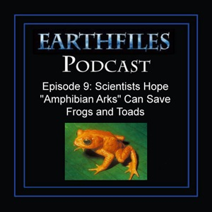 "Episode 9  -  Scientists Hope ""Amphibian Arks"" Can Save Frogs and Toads"